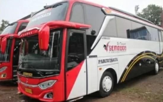 Sewa Sewa Bus Pariwisata Untuk Semua Perjalanan atau Acara