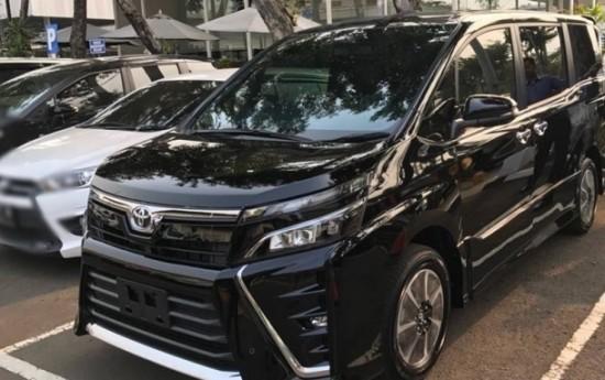 Sewa Toyota Voxy Tidak Akan Ganggu Alphard