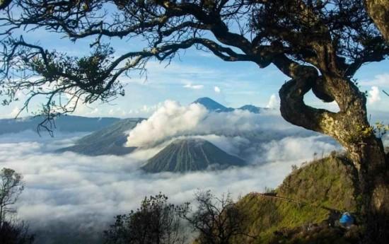 Sewa 4 Destinasi Wisata yang Anda Kunjungi dengan Paket Wisata Gunung Bromo