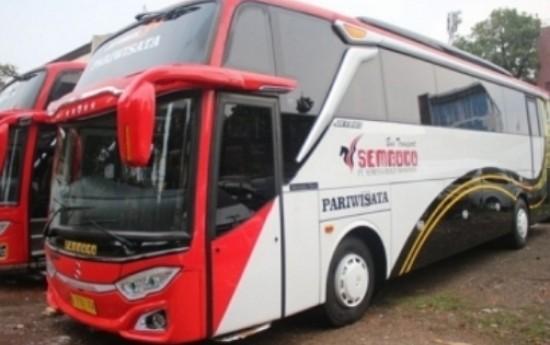 Sewa 4 Bus Pariwisata Mewah dari Karoseri Adi Putro