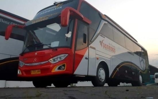 Sewa Kelebihan Menggunakan Bus Pariwisata Sedang Untuk Liburan