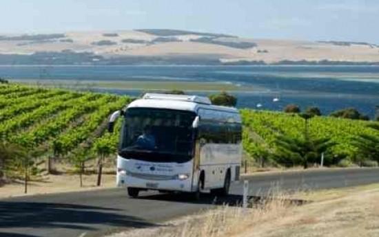 Sewa 5 Hal Penyebab Harga Sewa Bus Pariwisata Berubah-Ubah