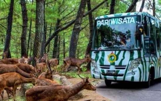 Sewa 3 Tempat Wisata di Jawa Barat yang Cocok Dikunjungi Dengan Bus Pariwisata