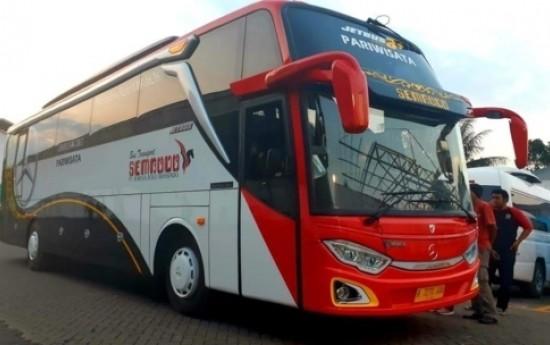 Sewa Tips Memilih Jasa Rental Bus Profesional Untuk Liburan Anda