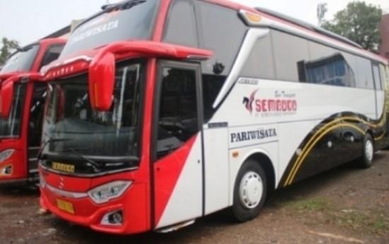 Sewa 6 Barang yang Harus Anda Bawa Ketika Bepergian Jauh dengan Bus Pariwisata