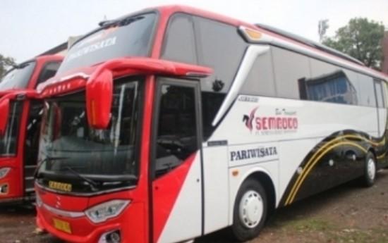 Sewa  Tips Sewa Bus Pariwisata yang Aman dan Nyaman