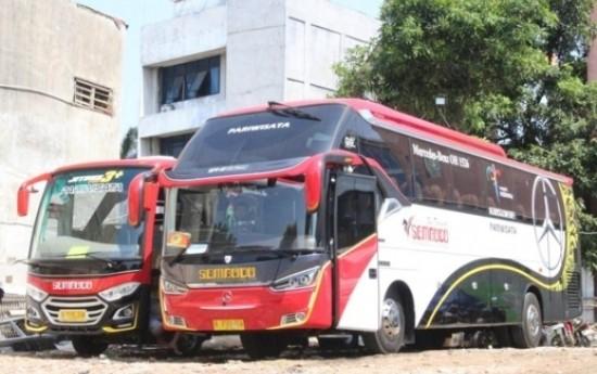 Sewa Alasan Mengapa Perlu Sewa Bus Pariwisata di Jakarta Untuk Berkeliling
