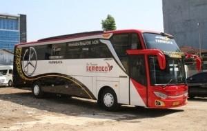 Mobil Pengantin Ternyata Ini Penjelasan Mengenai Tulisan EURO Pada Bodi Bus