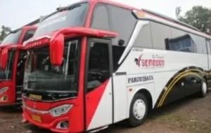 Mobil Pengantin Sewa Bus Pariwisata Untuk Semua Perjalanan atau Acara