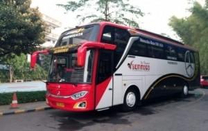 Mobil Pengantin Yuk Sewa Bus Pariwisata untuk Berlibur Ke Malang Jawa Timur