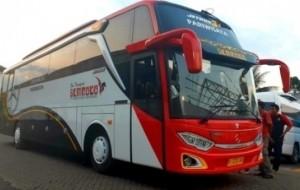 Mobil Pengantin Tips Memilih Jasa Rental Bus Profesional Untuk Liburan Anda