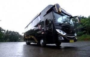 Mobil Pengantin Ingin Sewa Medium Bus? Yuk, Cari Tahu Spesifikasi dan Fasilitas di Dalamnya!