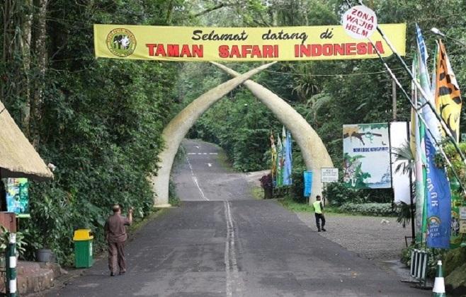 Wisata Taman Safari Bogor Dari Jakarta